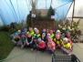 Výstavy - zahradnictví a zahrádkářů